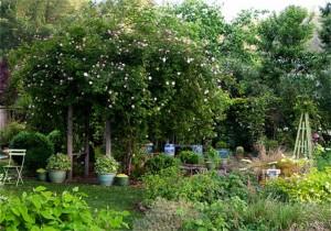 giardinorose (Copia)